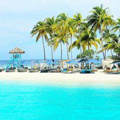 "72 Likes, 5 Comments - Travel & Eat (@paradiseandfood) on Instagram: ""The Maldives Islands - Finolhu Maldives"""