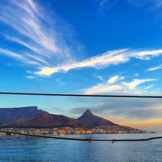 The 10 Best things to do in Cape Town during your first visit to Cape Town: from Table Mountain to day trips to the Cape Winelands, here are the. World Of Wanderlust, Le Cap, Cape Town South Africa, The Beautiful Country, Beautiful Places, Table Mountain, Online Travel, Best Cities, Amazing Destinations