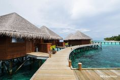These Are the 25 Most Amazing Hotels Across the World - Mirihi Island Resort