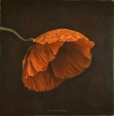 Poppies, esp. orange are wonderful.  My favorites are the CA goldens