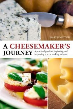French style soft cheese and other delicious cheese recipes