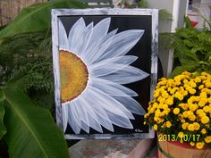 White daisy on black with some textured painting. Old Windows Painted, Painted Window Screens, Painted Window Art, Window Screen Crafts, Window Pane Art, Painting On Screens, Texture Painting On Canvas, Simple Acrylic Paintings, Textured Painting