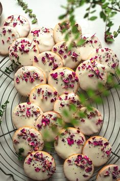 The only Vegan Shortbread Cookie recipe you need. They are perfectly sweet and crunchy with a buttery interior. Topped with a classic sugar frosting. Vegan Shortbread, Shortbread Cookies, Biscotti, Cookie Recipes, Dessert Recipes, Cookie Press, Vegan Comfort Food, Icing Recipe, Gluten Free Cookies