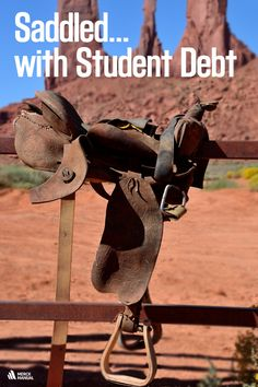 It's hard not feel the weight of student debt looming over your head as a veterinary student.