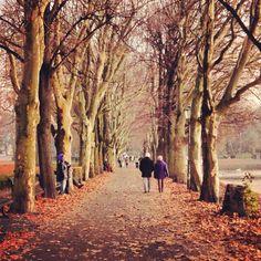 Berlin Alt Tegel Park