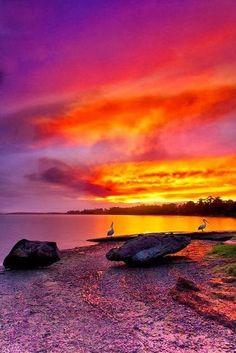 Shoalhaven River Sunset | nature | | sunrise | | sunset | #nature https://biopop.com/