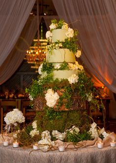 1000 images about nashville weddings on pinterest for Angela florist decoration