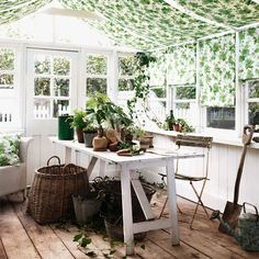Sanderson - Traditional to contemporary, high quality designer fabrics and wallpapers | Products | British/UK Fabric and Wallpapers | Hedera (DVIN224336) | Vintage 2 Prints