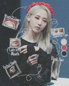Laura Lee, Kpop Girl Groups, Kpop Girls, Meme Photo, Mamamoo Moonbyul, Solar Mamamoo, Cute Hamsters, Digital Art Tutorial, Kawaii