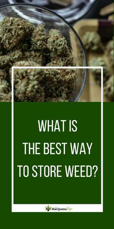 What is the best way to store weed to keep it from drying out, losing its potency or growing moldy? We discuss this question plus where not to store your weed at The Marijuana Vape. Remedies For Nausea, Natural Remedies, Cannabis Vape, Medical Marijuana, Vaping For Beginners, Healthy Alternatives, How To Dry Basil, Weed, The Cure