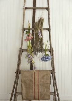 ♕ drying flowers indoors (a little preview from Fifi O'Neills upcoming 'French…