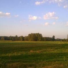 Budy Michałowskie