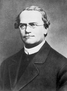 Multimídia: Mendel, Gregor | Britannica Escola Online