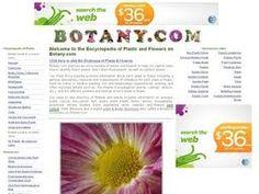 Botany es una enciclopedia de plantas y flores que ayuda a identificar las plantas tanto de interior como de exterior, proporcionando para cada una de ellas una descripción general así como los métodos y los requisitos para su cultivo. Brainstorm, Botany, Interior, Garden, Diy, Vegetable Gardening, Growing Up, Plants, Flowers