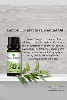 Lemon Eucalyptus Organic Essential Oil 10 mL This is such an uplifting oil! We love to use this to freshen up bathrooms. You can place some on your shower floor for a nice steam! Plant Therapy Essential Oils, Are Essential Oils Safe, Essential Oil Bottles, Organic Essential Oils, Lemon Essential Oils, Essential Oil Uses, Essential Oil Diffuser, Eucalyptus Oil Uses, Lemon Eucalyptus Essential Oil