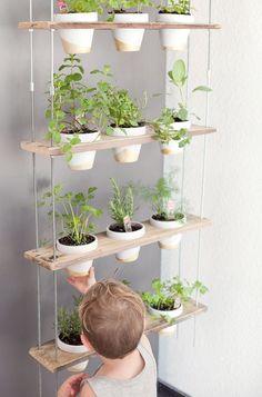 DIY Hanging Herb Garden -18 #herbsgardening #hangingherbgardens