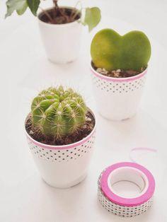washi tape diy succulent planter with pink rim