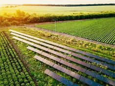 Renewable Energy, Solar Energy, Wooden Hammock Stand, Farm Layout, Les Continents, Sustainable Farming, Scientific American, Small Farm, Alternative Energy