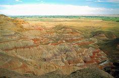 ECO-DIARIO-ALTERNATIVO: Un cambio climático hace 56 millones de años se parece al actual
