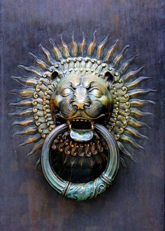 ☂tem de tudo - A door knocker in the form of a roaring lion, symbolically protecting the house.