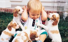 If Puppies Ran Trade Shows and Events | Trade Show Tales Blog