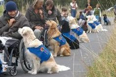 Love this photo - service dogs are so amazing!