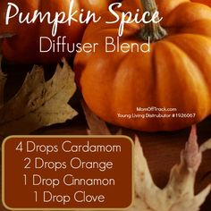 Pumpkin spice diffuser blend. Yummy. #essentialoils #getoily #youngliving