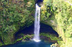 """""""The Lost World"""" Omanawa Falls, Tauranga, The North Island, New Zealand"""