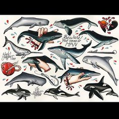 Wade Johnston - Tattoo Flash Wade Johnston has just finished up this whale tattoo flash sheet. If any of these tattoo designs from Wade, get in contact and we can sort you out with a booking.