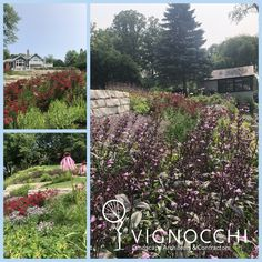 Landscape, Design and Maintenance in Lake and Cook Counties, IL Shrubs, Perennials, How To Become, Outdoor Structures, Landscape, Stone, Plants, Beautiful, Color