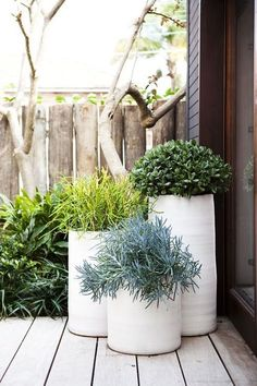 Giant outdoor planters to improve the look of your homes exterior. White large planters for curb appeal and backyard decor. Dream Garden, Home And Garden, Modern Planters, White Planters, Patio Planters, Tall Planters, Ceramic Planters, Tall White Planter, Small Gardens