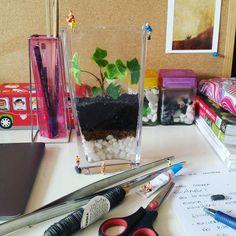 Todos buscamos nuestro lugar. .. #terrario #terrarium #miniature #glass #plantas #plants #hiedra #enelbosque #loveterrarium #pequeñoshabitantes #inprogress #loveplants #craft #creative
