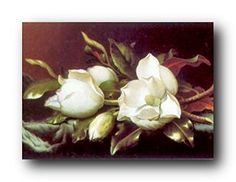 Poster Of White Magnolia Flower Floral Wall Decor Art Pri... https://www.amazon.com/dp/B00S2UBU4A/ref=cm_sw_r_pi_dp_x_bC46xbV22P65S