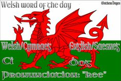 Welsh word of the day: Ci/Dog