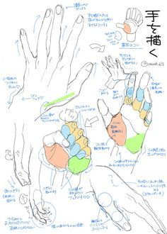 Tagged with art, themoreyouknow, reference, creativity, illustration; Even more Art/Reference Dump Anatomy Sketches, Anatomy Drawing, Anatomy Art, Manga Drawing, Hand Drawing Reference, Anatomy Reference, Art Reference Poses, Drawing Studies, Drawing Skills