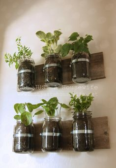 Mason Jar Planter - OMG, I love this idea! For Houseplants, for organization, for cut flowers, in the laundry room for clothes pins......oh my! My head is spinning!