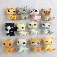 Littlest Pet Shop LPS Lot of 12 Cats Short Hair Tiger Striped Race ...