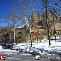 Today #IU #Bloomington WorkTravelTeach Abroad - How do you make a great first #impression #Job #VideoResume #VideoCV #Viewyou #jobs #jobseekers #careerservices #career #students #fraternity #sorority #travel #application #HumanResources #HRManager #vets #Veterans #CareerSummit #studyabroad #volunteerabroad #teachabroad #TEFL #LawSchool #GradSchool #abroad #ViewYouGlobal viewyouglobal.com ViewYou.com #markethunt MarketHunt.co.uk