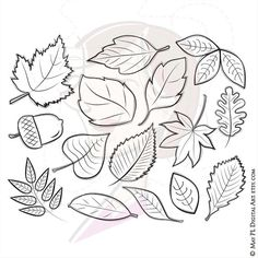 Check out this item in my Etsy shop https://www.etsy.com/au/listing/280753872/fall-autumn-leaves-clipart-digital