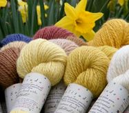 Way to get great yarn and roving from farms in the Chesapeake area