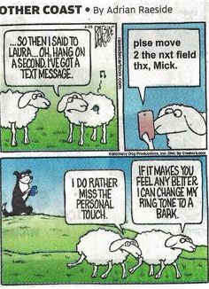 You must understand the Border Collie psyche to fully appreciate this. BCs are no doubt smart enough to send a text. Sheep, on the other hand. Border Collie Humor, Border Collie Art, Collie Dog, Funny Sheep, Funny Dogs, Funny Animal Pictures, Funny Animals, Animal Funnies, Farm Humor