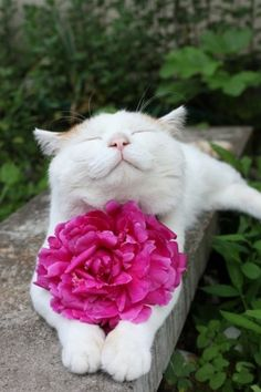 """""""I always stop to smell the flowers!"""""""