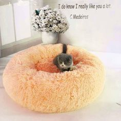 Calming Pet Dog Bed XL, Dark Blue Puff Cushion for Large Medium Small Dogs Puppy Kitty Kitten S-XXL Marshmallow Cat Bed