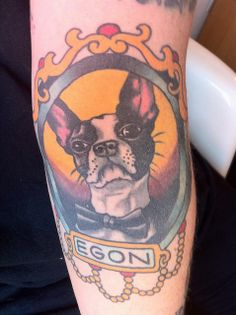 Boston Terrier Tat