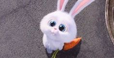Illumination Entertainment offers up Easter greetings in a new video that promotes their upcoming The Secret Life of Pets movie, in theaters July Cute Bunny Cartoon, Cute Cartoon Pictures, Cartoon Pics, Cute Disney Wallpaper, Cute Cartoon Wallpapers, Snowball Rabbit, Evvi Art, Rabbit Wallpaper, Pets Movie