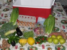 CSA - a great way to get Quality Produce!
