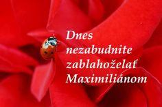 VŠETKO NAJLEPŠIE, dnešným meninovým oslávencom MAXIMILIÁNOM i tým, ktorí dnes slávite svoje narodeniny! ♥