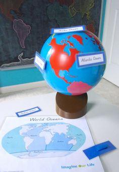 Montessori Ocean 3-Part Cards & Control Chart