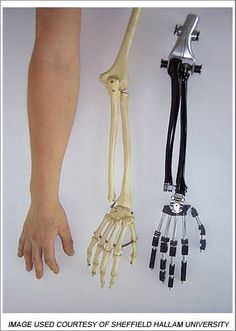 artificial muscle for bionic robot arm - Google Search
