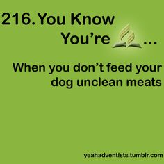 When you don't feed your dog unclean meats. Happy Sabbath Quotes, Seventh Day Adventist, Religious Quotes, Christian Life, Trust God, Words Quotes, Encouragement, Religion, Spirituality
